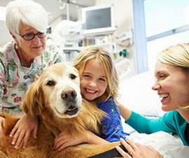 Pet Therapy Dog